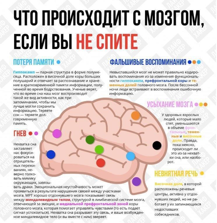 Что происходит с мозгом, когда мы не спим…