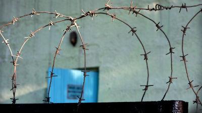 Националиста Дацика по прозвищу Рыжий Тарзан задержали на выходе из колонии