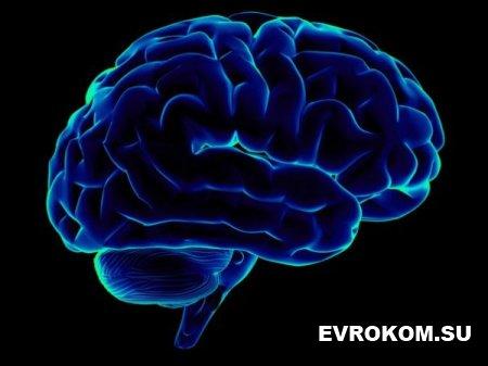 7 вмятин, которые оставляет интернет в нашем мозге