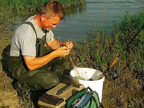 рыбалка держи жерлицы во  кировской области