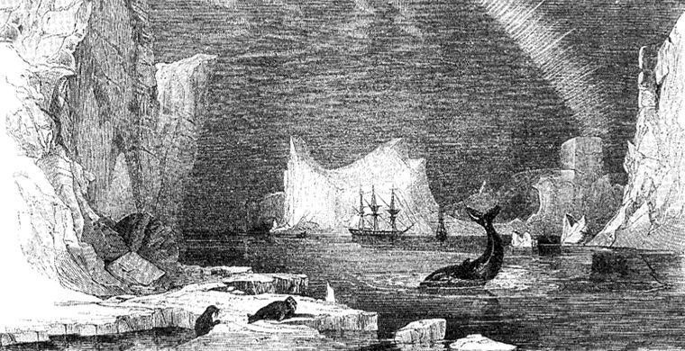 Загадка пропавшей экспедиции