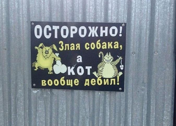 В Петербурге предложили прив…