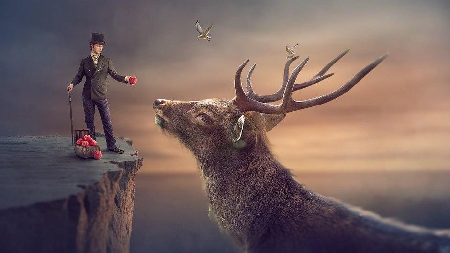 Картинки по запроÑу big deer photoshop