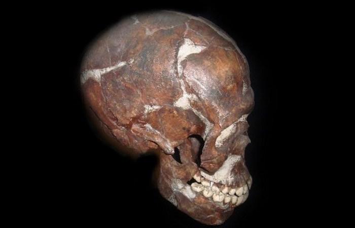 Черепу около 100 000 лет.