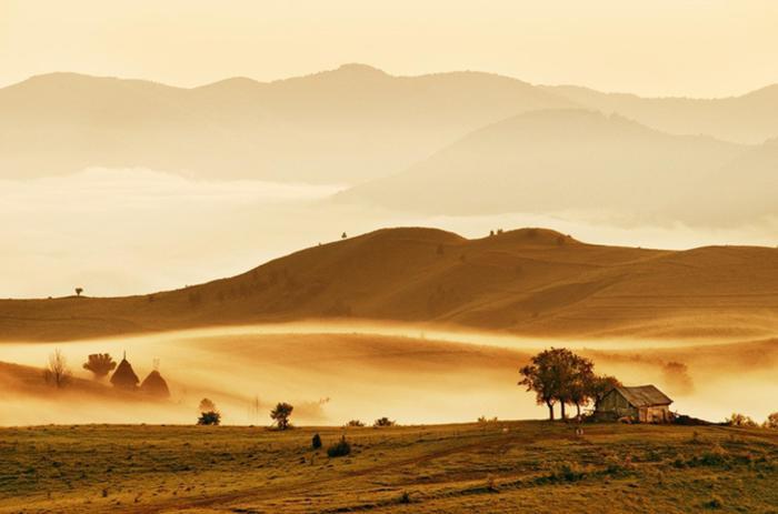 Золотые холмы. Автор: Cornel Pufan.
