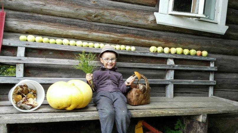 внучок в деревне
