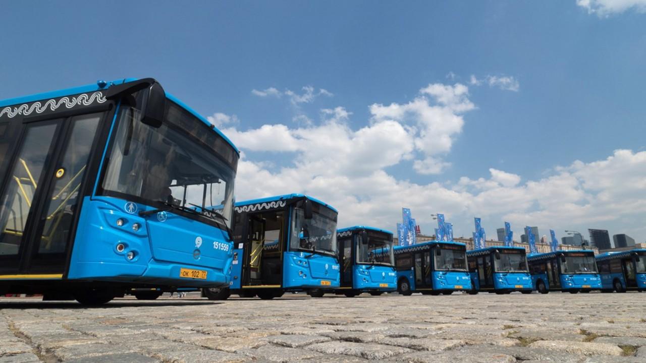 Аналитик негативно оценил инициативу ГИБДД о подушках безопасности в автобусах