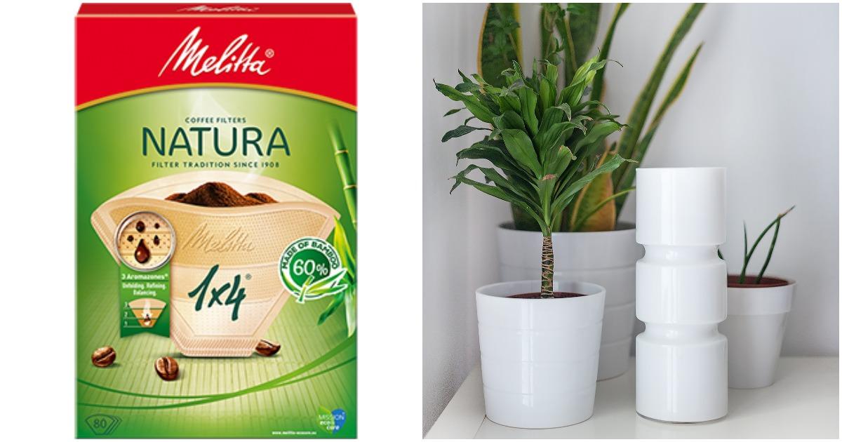 4 веские причины использовать кофейные фильтры для комнатных растений