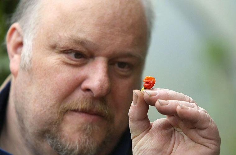 Мужчина случайно вырастил самый острый перец в мире