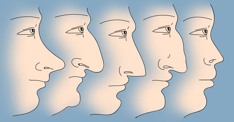 характер по носу