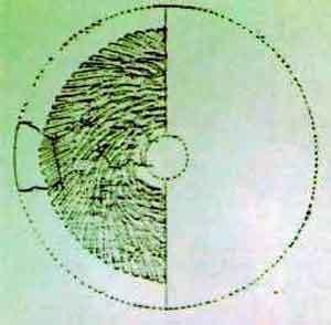 Тайны Тибета: загадка гранитных дисков