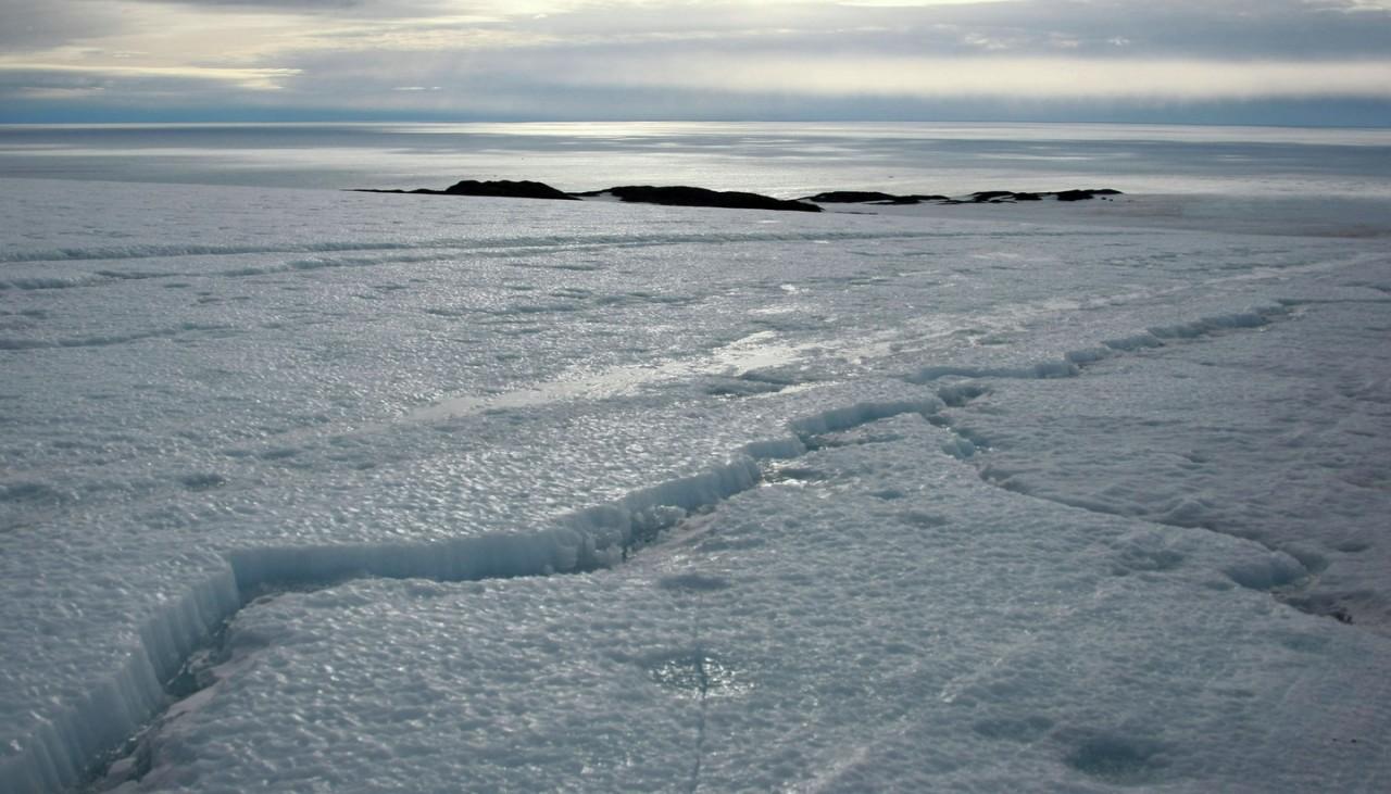Учёные: Процесс таяния антарктических ледников ускоряется