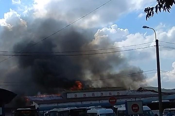 Пожар в торговом центре «Солнечногорский пассаж» в Подмосковье: в соцсетях обсуждают версию поджога