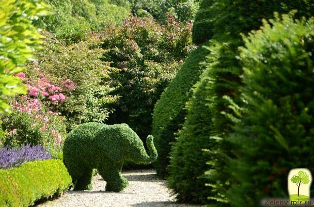 Сад Левенс Холл – самый красивый и самый ароматный сад в мире, Англия - 9