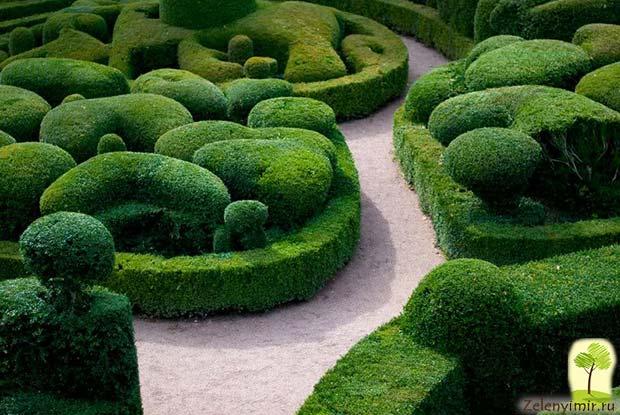 Сад Левенс Холл – самый красивый и самый ароматный сад в мире, Англия - 6