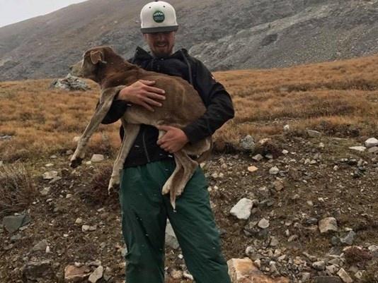"""""""6 недель в ловушке, но он надеялся!"""" О том, как двое парней покорили горы, чтобы спасти собаку"""