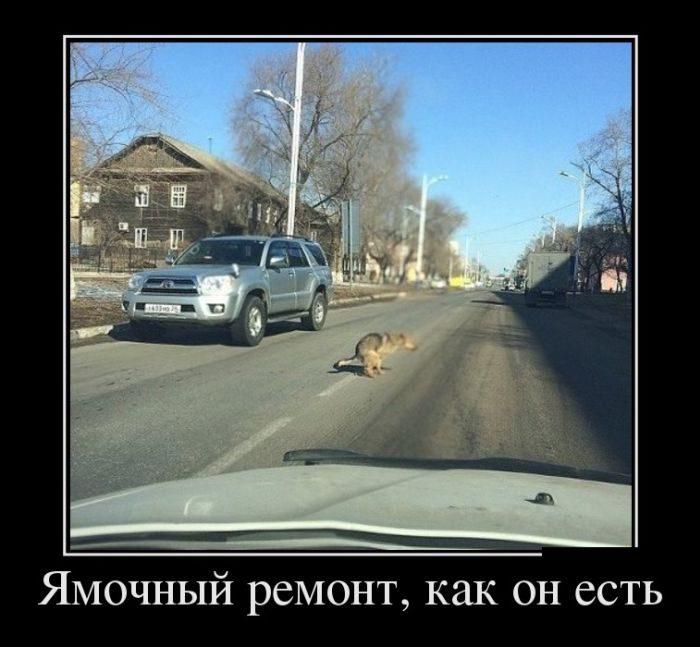 http://mtdata.ru/u22/photo756A/20264671490-0/original.jpg