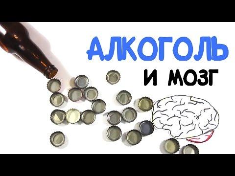 Мозг и алкоголь [AsapSCIENCE]
