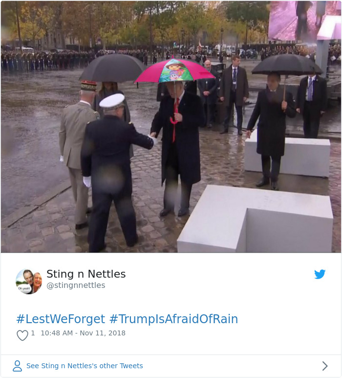 25+ Of The Best Reactions To Trump Canceling WWI Cemetery Visit Because Of Rain