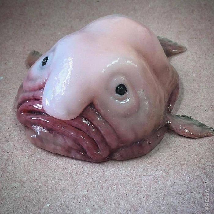Жуткие обитатели морских глу…
