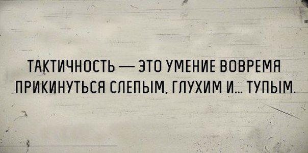 В точку! Лучшие цитаты дня