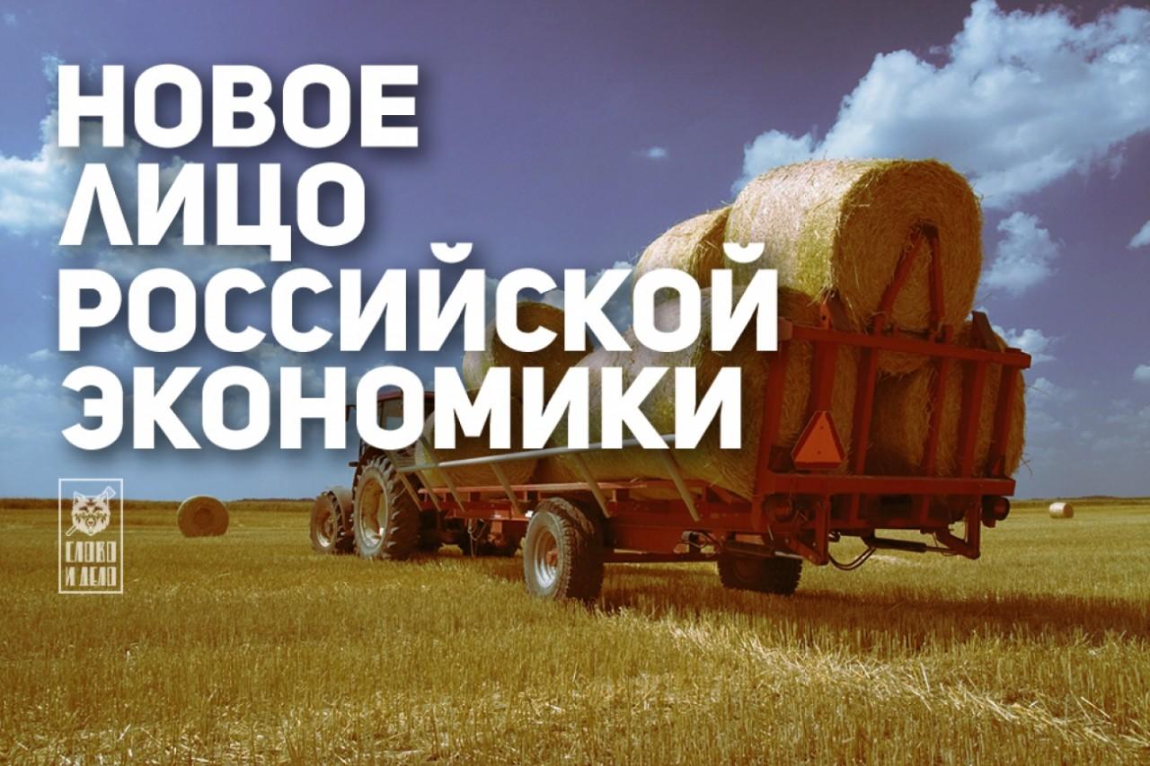 Большое спасибо за санкции,или Как Запад возродил российскую промышленность