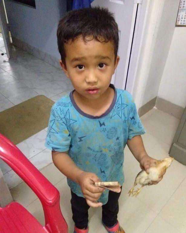 Человек растет! Малыш сбил на велосипеде цыплёнка и отнёс его в больницу, умоляя врачей о помощи