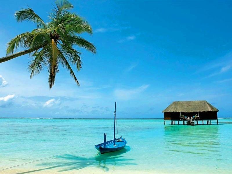Чем хорош отдых на Шри-Ланке…