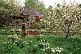 Таинственный сад - Таши Тюдор.