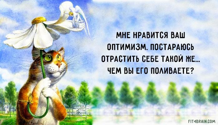 http://mtdata.ru/u22/photo8F24/20122734482-0/original.jpg