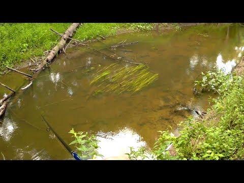 ловля щуки весной на спиннинг видео на днепре