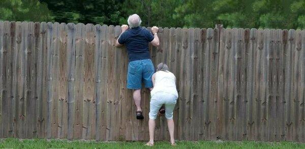 Забор — не преграда…