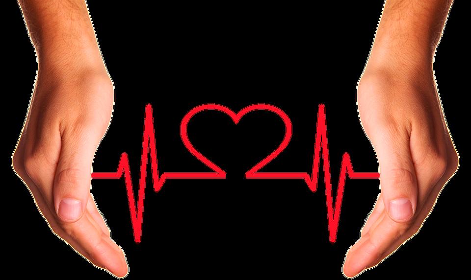 Изображение с сайта https://pixabay.com