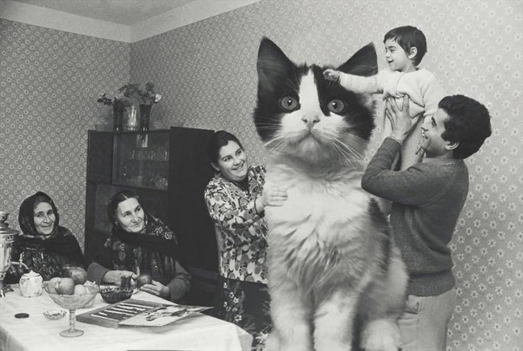 Кто-то объединил огромных кошек с советским временем, звучит бредово, но в этом есть смысл