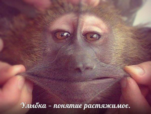 Улыбка — понятие растяжимое…)))