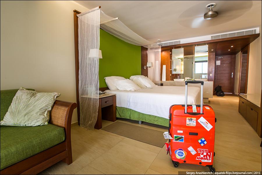 Cамые грязные предметы в вашем отельном номере