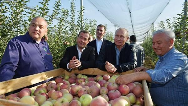 Путин и Медведев «напросилис…