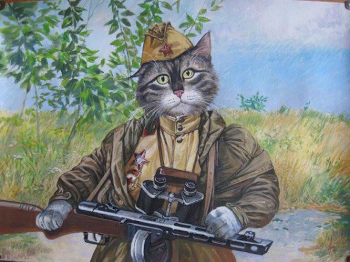 История кота-зенитчика