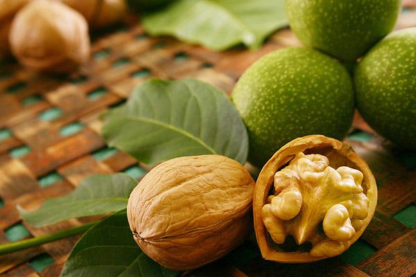 Все рецепты целебных настоек из грецкого ореха