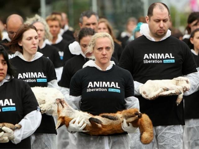 Защитники животных оказались глобальной спецслужбой с кровавой историей