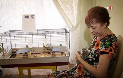В Москве волонтеры оказывают паллиативную помощь
