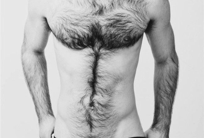 Интересные факты о волосах на теле мужчин