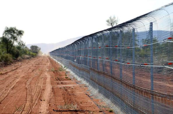В Австралии построили самый большой «антикошачий» забор