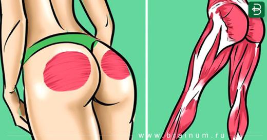 5 крутых упражнений для упругой попы и грациозных ног!