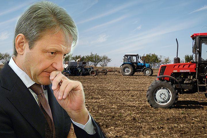 Александр Ткачев: Россия соберёт больше 127 млн тонн зерна в 2017 году