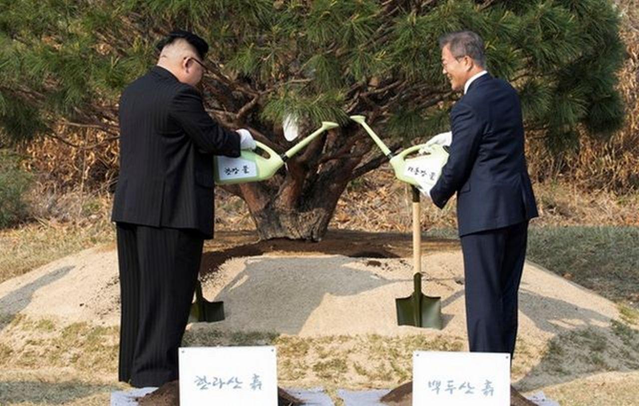 Две Кореи и Трамп, потерявший лицо