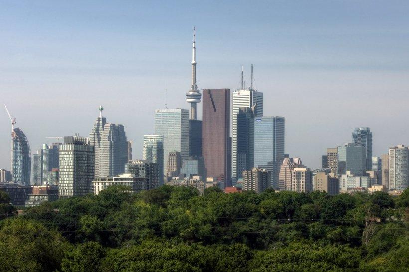 12 городов с самым большим количеством деревьев в мире