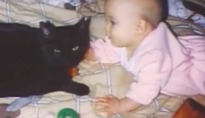 Мать услышала крик кошки из …