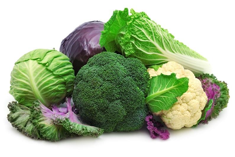Виды капусты: особенности выращивания, польза, свойства