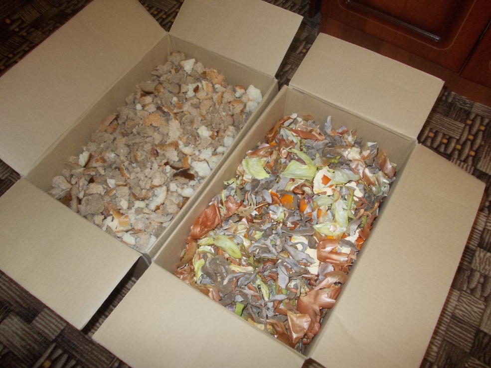 пищевые отходы на грядку